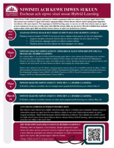 PDF of Elementary Hybrid Factsheet