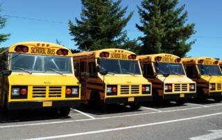 Buses lined up in a parking lot